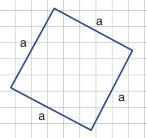 Quadrat Quiz